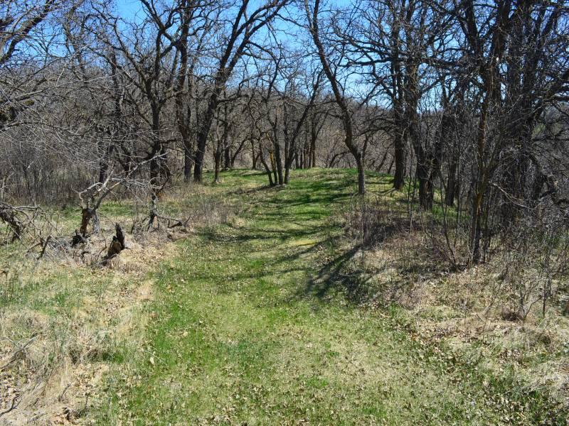 Evenson Oak Mtn,Bottienau,North Dakota 58318,Lot,Evenson Oak Mtn,1219