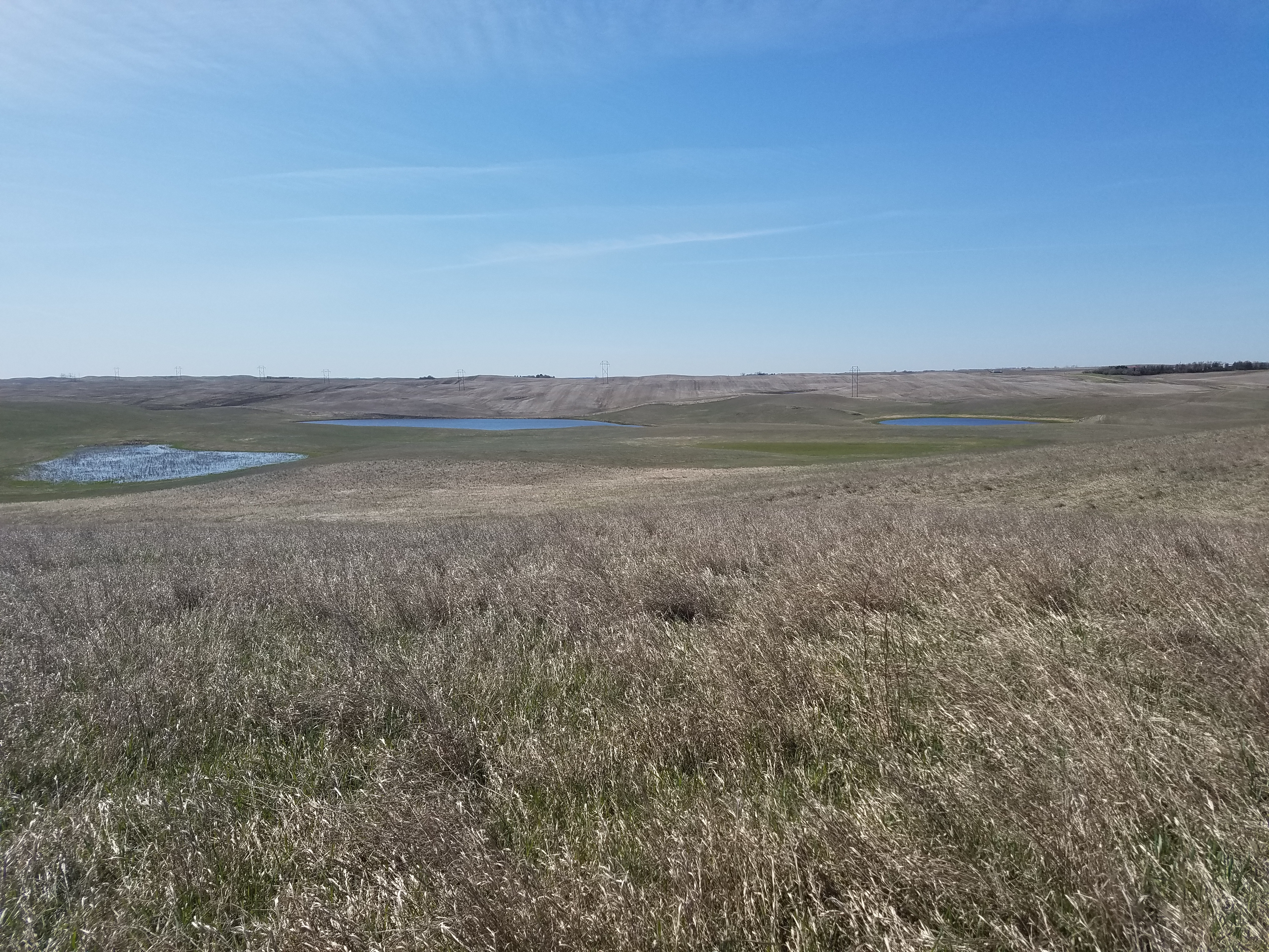 Hunting, For Sale, street south west, Listing ID 1220, Berthold, Ward, North Dakota, United States, 58718,