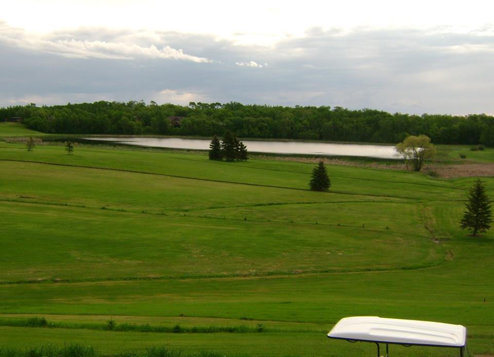 Lake, For Sale, Lake Loop Road, Listing ID 1241, Lake Metigoshe, Bottineau, North Dakota, United States, 58318,