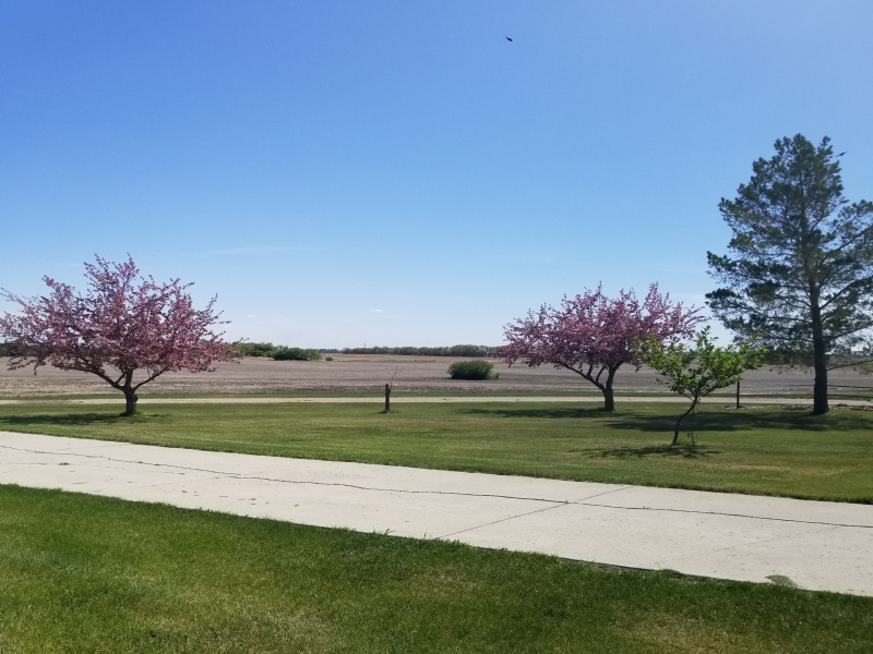 9625 County Road 47,Bottineau,North Dakota 58318,Residental,County Road 47,1268