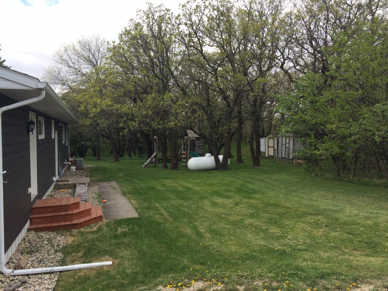 Bottineau,North Dakota,Residental,1272