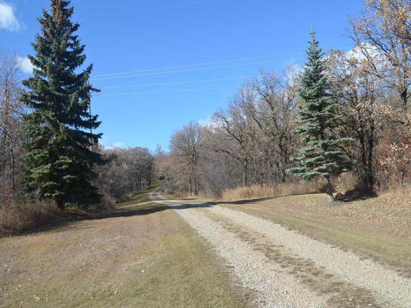 Bottineau,North Dakota 58318,Rual,1300