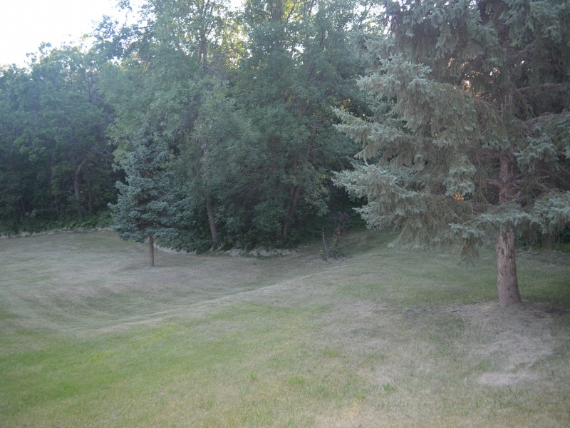 10311 Sjule Road,Bottineau,North Dakota 58318,4 Bedrooms Bedrooms,4 BathroomsBathrooms,Rural,Sjule Road,1300