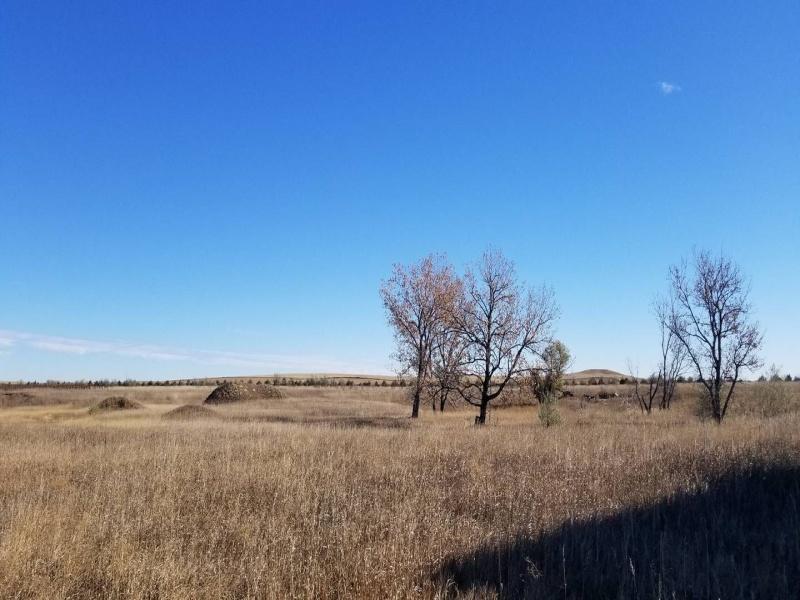 205 8th Ave East,Hettinger,North Dakota 58639,Land,8th Ave East,1303