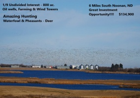 106th Ave. NW,Noonan,North Dakota 58765,Farm,Ave. NW,1332