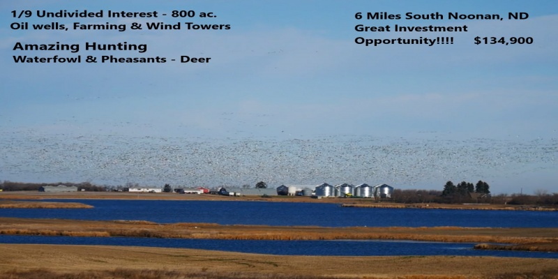 106th Ave. NW,Noonan,North Dakota 58765,Farm,Ave. NW,1332