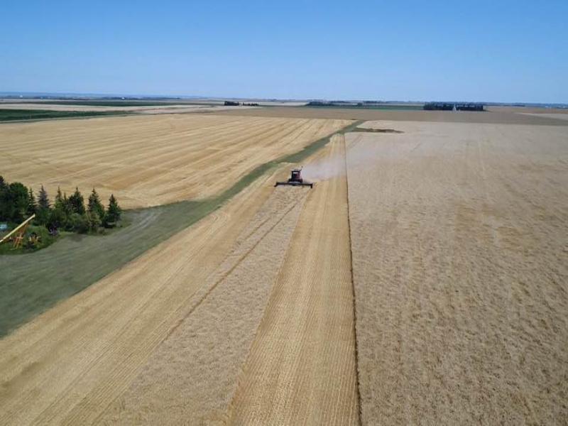Street NW 108th,Portal,North Dakota 58772,Farm,108th,1370