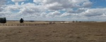 10028 11th Ave. NW,Bottineau,North Dakota 58318,Land,11th Ave. NW,1403