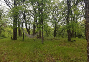 54 Squaw Point Road,Bottineau,North Dakota 58318,Vacant Lot,Squaw Point Road,1413
